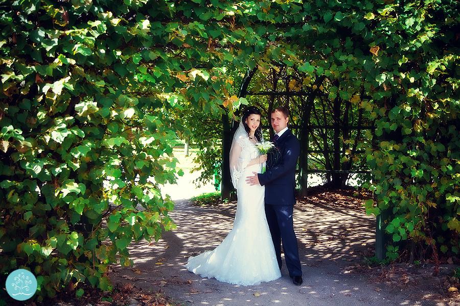 svadba-v-krasnogorske-41