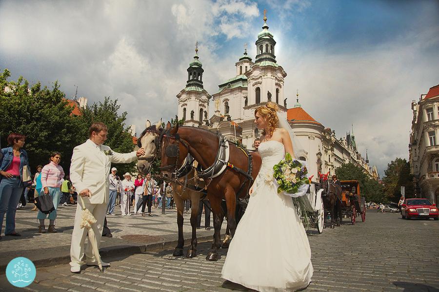 svadba-v-prage-28