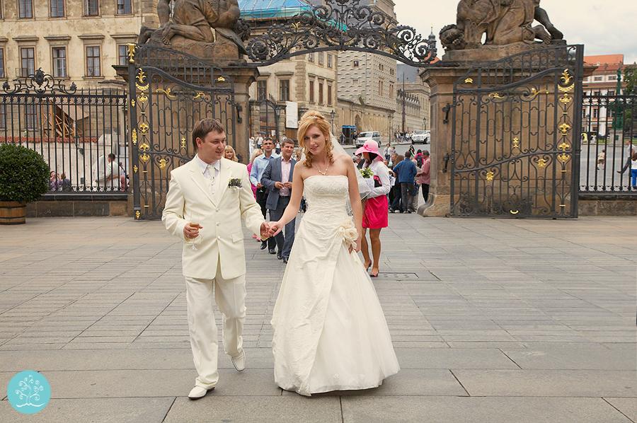 svadba-v-prage-52