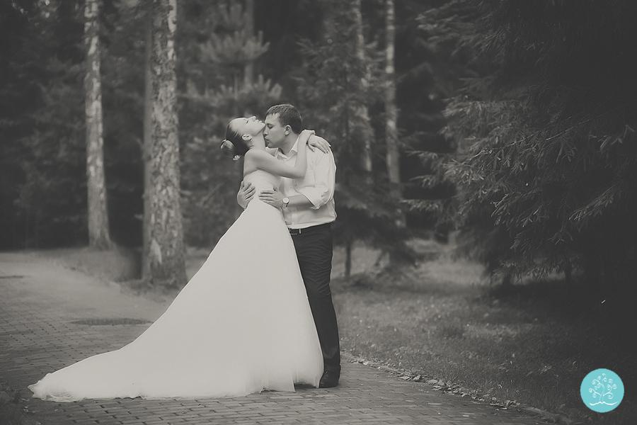 weddingweb-453